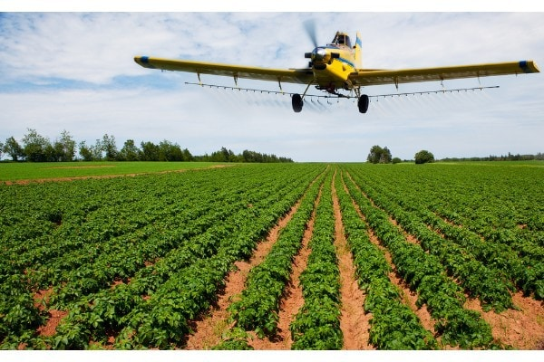 California Department Of Pesticide Regulation Recommends Temporary Restrictions On Chlorpyrifos