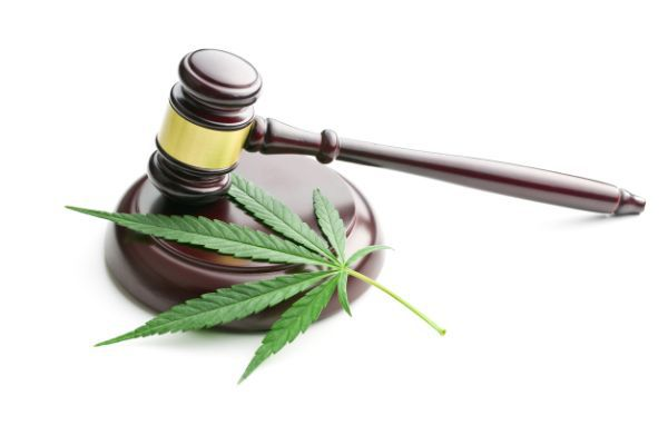 FDA To Hold Public Hearing On Cannabis